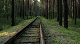 Novosibirsk Zoo minitrain rail into the woods